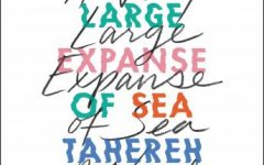 A Very Large Expanse of Sea: Book Review