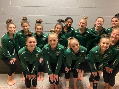 Loudoun Valley Gymnastics Team Competes At Districts