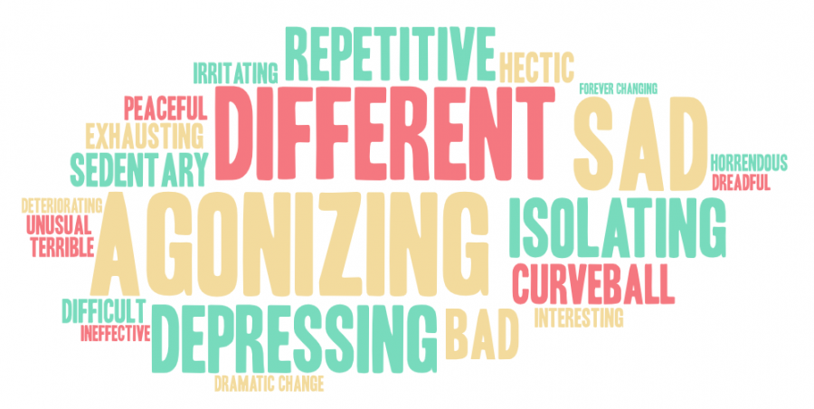 Word art created based on students' opinions on virtual learning, which were  collected through an Instagram poll conducted on Feb. 16.